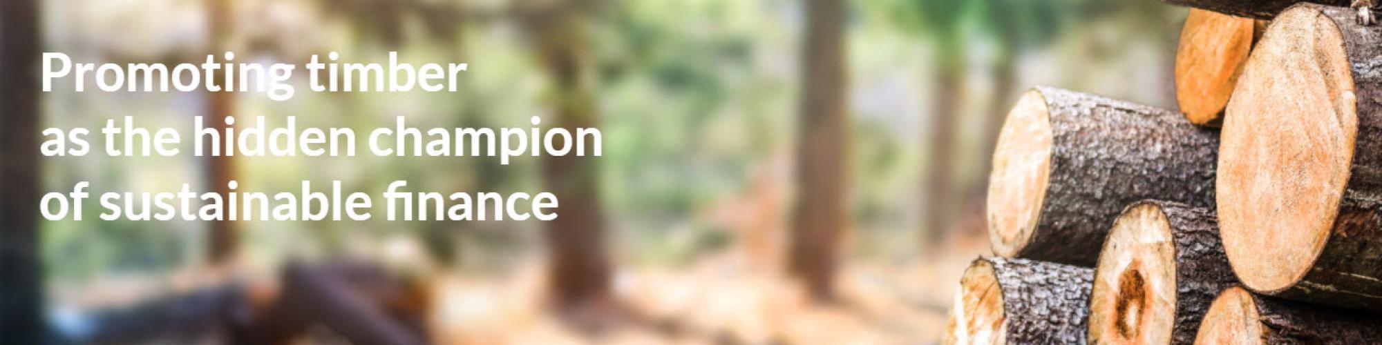 Timber Finance Initiative