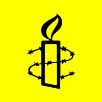 QUEERAMNESTY logo image